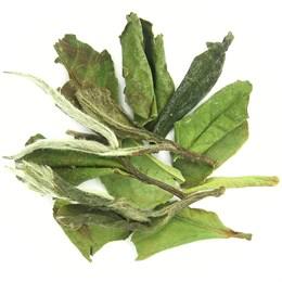 Китайский чай Белый пион кат. А, 100 г